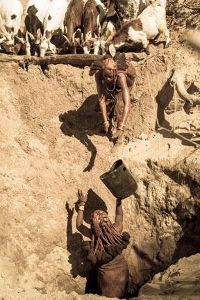 Namib Day 6-121